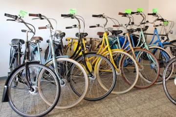 City-Bikes & Hollandräder